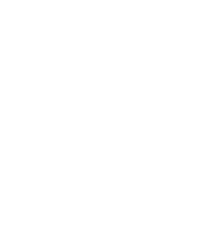 Connectivity Midas white